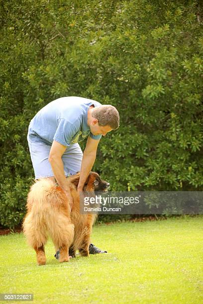 Gently petting a sweet dog