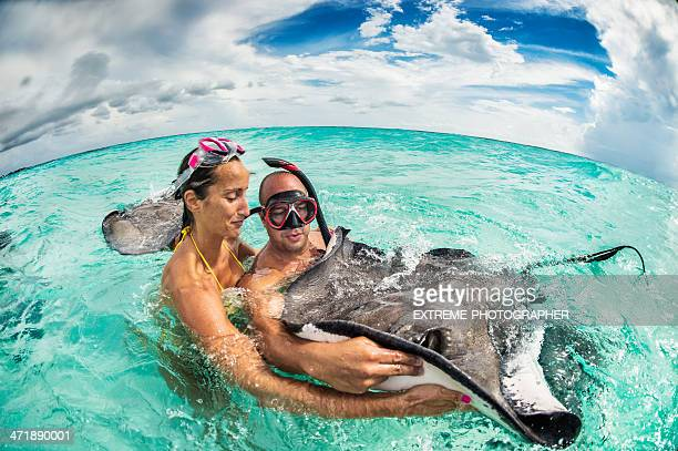 gently touch - stingray stock photos and pictures