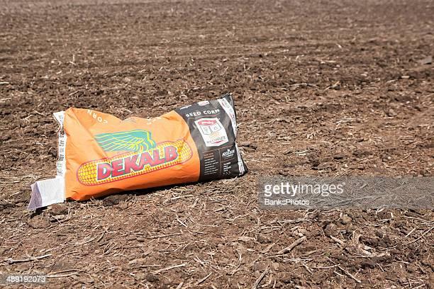 dekalb genuity seed corn bag on plowed field - dekalb stock photos and pictures