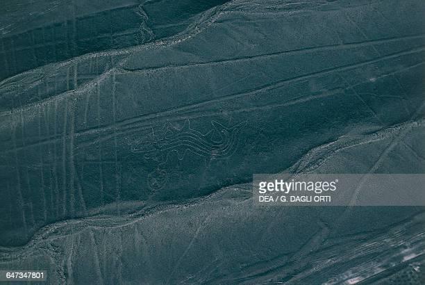 Geoglyph Nazca Lines Nazca Peru