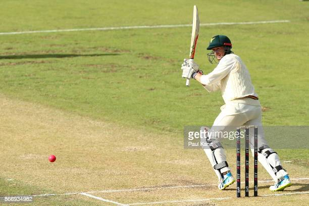 George Bailey of the Tigers bats during day two of the Sheffield Shield match between Western Australia and Tasmania at the WACA on October 27 2017...