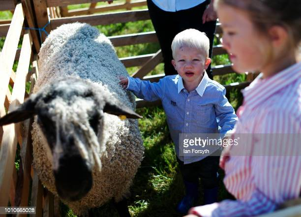 George Baker from Kirbymoorside stands in the pen with his sheep during 152nd the Ryedale Country Show on July 31 2018 in Kirbymoorside England Held...