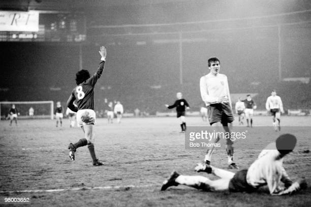 George Best celebrates after scoring for Northern Ireland during the British Home International Championship match between England and Northern...