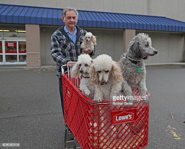 George Collins is pictured with his dogs Amber in his hand Brandy the mother Molly and Bentley leaving Lowe's in West Bridgewater MA on Dec 6 2016...