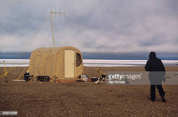 George Divoky heads for his tent, August 2001 on Cooper Island, Alaska. Ornithologist George Divoky has journeyed to Cooper Island off the coast of...