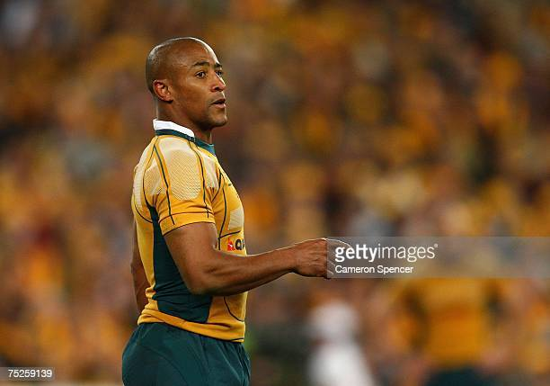 George Gregan of the Wallabies talks to team mates during the 2007 Tri Nations match between the Australian Wallabies and the South African...