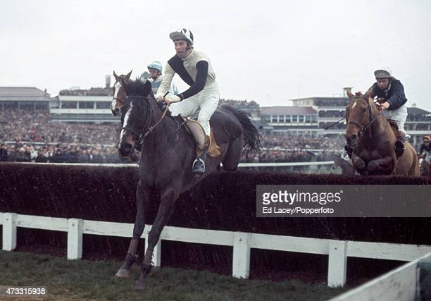 George Hyatt riding Real Rascal leading during the Foxhunter Challenge Cup at the Cheltenham Racecourse in Gloucestershire England on 12th March 1975