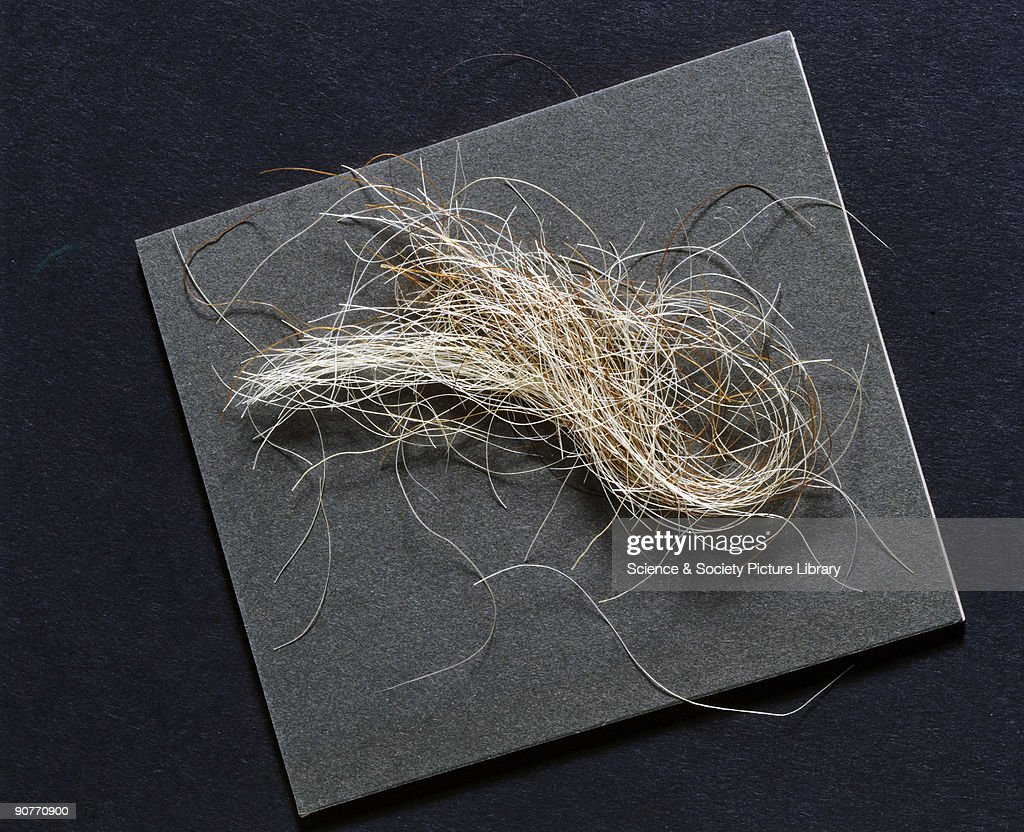 A lock of hair, reputed to have been taken from King George III, 1760-1820. : News Photo