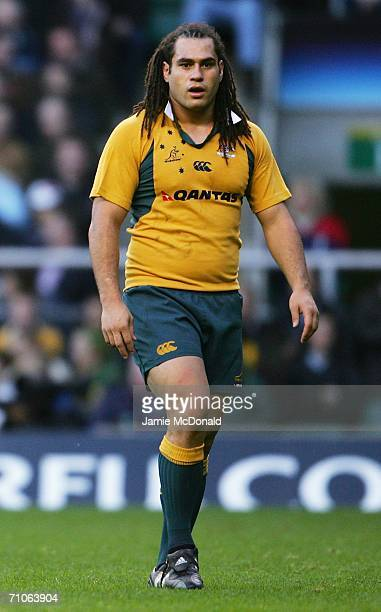 George Smith of Australia looks on during the Investec Challenge match between England and Australia at Twickenham on November 12 2005 in London...