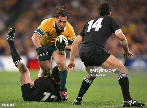 George Smith of the Wallabies in action during the Tri Nations series Bledisloe Cup match between the Australian Wallabies and the New Zealand All...