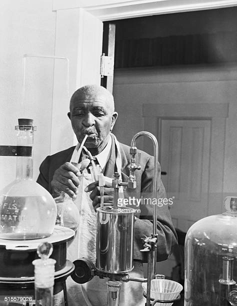 George Washington Carver experimenting in the lab Undated photograph