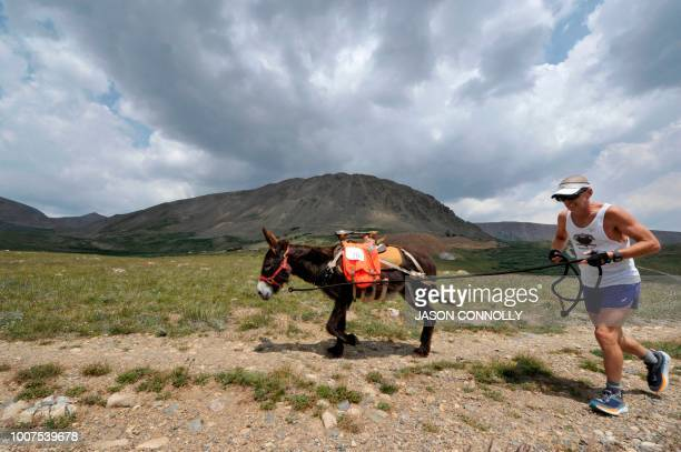 George Zack of Broomfield Colorado runs with his burro Jacko as they head towards Mosquito Pass during the 70th Annual Burro Days Race in Fairplay...