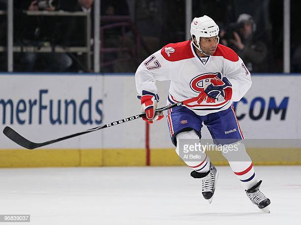 Georges Laraque of the Montreal Canadiens in action against the New York Rangers during their game on January 17 2010 at Madison Square Garden in New...