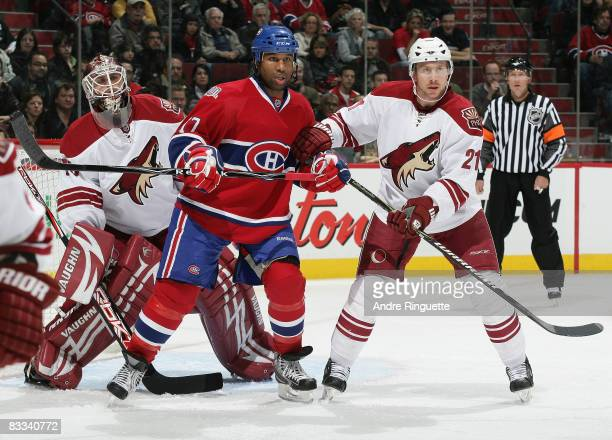 Georges Laraque of the Montreal Canadiens positions himself in front of the crease against Ilya Bryzgalov and David Hale of the Phoenix Coyotes at...