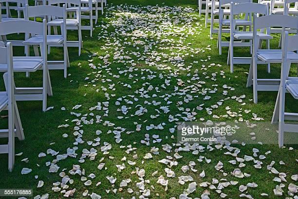 usa, georgia, atlanta, flower petals on green lawn for wedding ceremony, chairs on sides, symmetrical image - geórgia sul dos estados unidos - fotografias e filmes do acervo