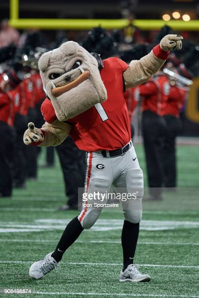 Georgia Bulldogs mascot Hairy Dawg celebrates with fans during the College Football Playoff National Championship Game between the Alabama Crimson...