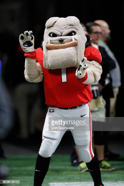 Georgia mascot Hairy Dawg during the College Football Playoff National Championship Game between the Alabama Crimson Tide and the Georgia Bulldogs on...