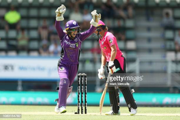 Georgia Redmayne of the Hurricanes celebrates after taking a catch to dismiss Ashleigh Gardner of the Sixers during the Women's Big Bash League match...