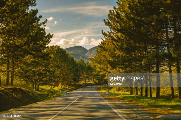 georgia road trip in winter sunny sky - georgia country stock pictures, royalty-free photos & images