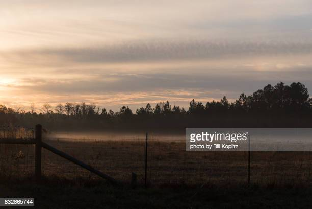 georgia rural sunrise - georgia country stock pictures, royalty-free photos & images
