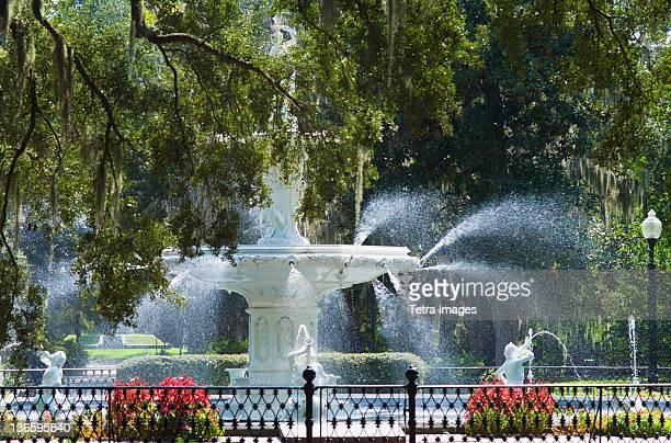 usa, georgia, savannah, foley square fountain - savannah stock photos and pictures