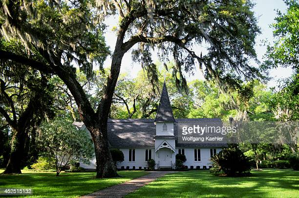 USA Georgia St Simons Island Christ Church Oak Trees With Spanish Moss