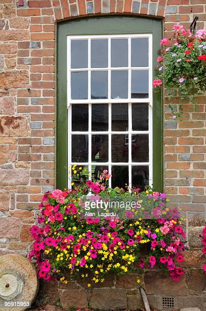 georgian architecture,jersey. - hanging basket stock pictures, royalty-free photos & images