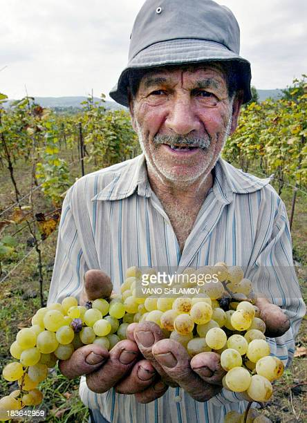 Georgian farmer, Mikho holds a grape from his vineyard in the village in Georgian region of Kakheti, 26 September 2005. In a country where wine...