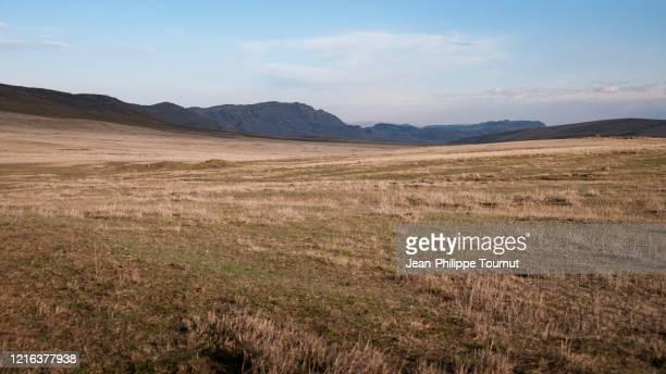 georgian steppe near david gareja monastery, kakheti region, eastern georgia - trockenlandschaft stock-fotos und bilder