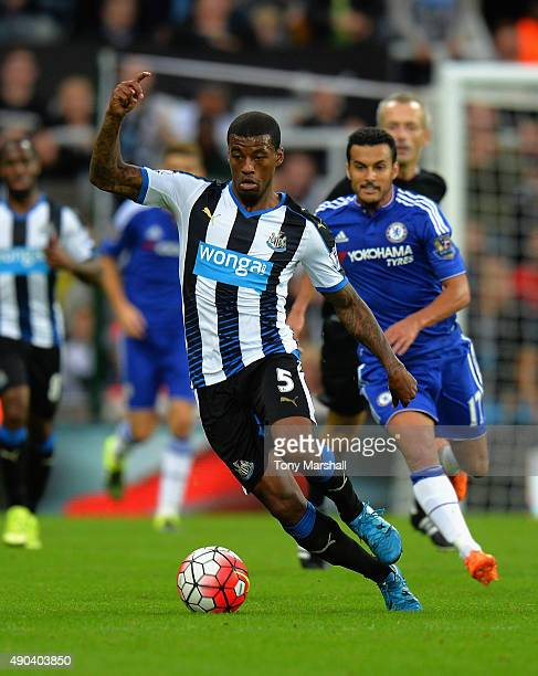 Georginio Wijnaldum of Newcastle United during the Barclays Premier League match between Newcastle United and Chelsea at St James' Park on September...