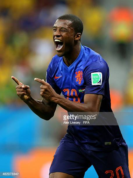 Georginio Wijnaldum of the Netherlands celebrates scoring his team's third goal during the 2014 FIFA World Cup Brazil 3rd Place Playoff match between...