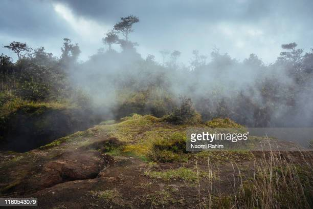 geothermal activity at steam vents, crater rim trail, volcanoes national park, hawaii - パホア ストックフォトと画像