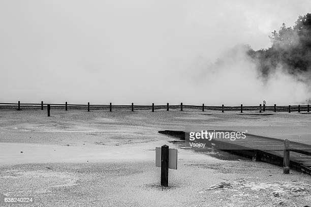 geothermal, new zealand. - vsojoy stockfoto's en -beelden