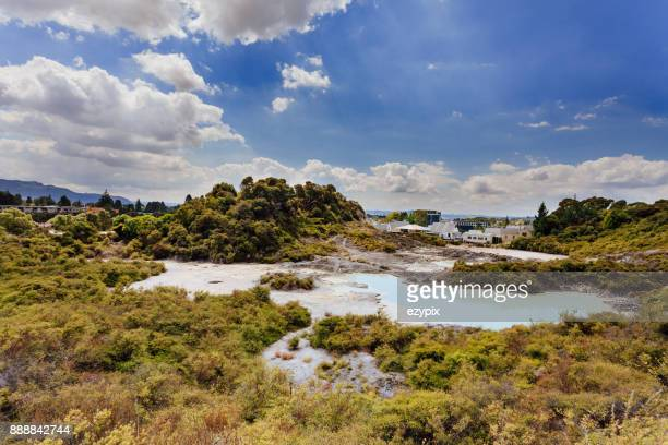geothermally park New Zealand