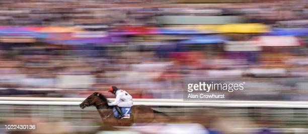 Ger ONeill riding Titus win The Sky Bet Stakes at York Racecourse on August 24 2018 in York United Kingdom