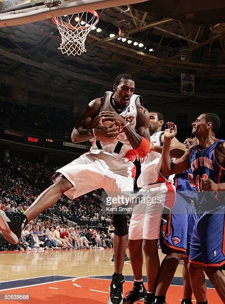Gerald Wallace of the Charlotte Bobcats protects the rebound ball against Kurt Thomas of the New York Knicks on April 16 2005 at the Charlotte...