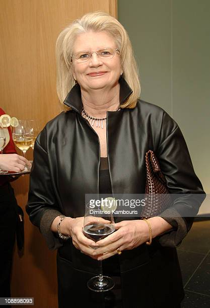 Geraldine Laybourne during Glamour Hero Issue Luncheon at Modern in New York City New York United States