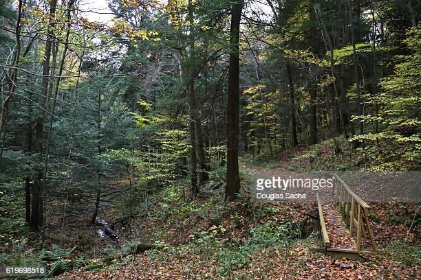 gerard backpack trail, oil creek state park, oil city, pennsylvania, usa - geografia física - fotografias e filmes do acervo