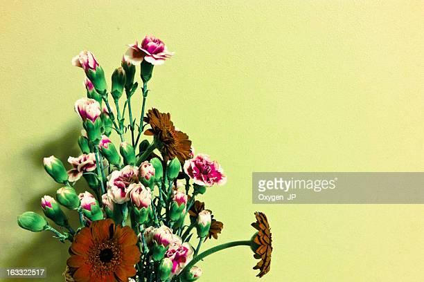 Gerbera and Carnation
