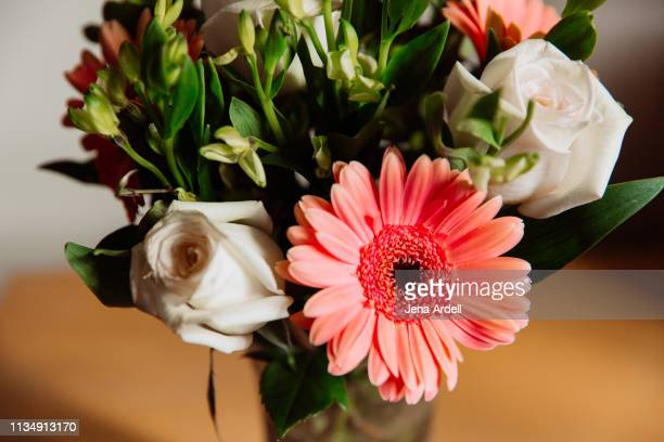 gerbera daisy in floral arrangement with white roses, flower bouquet, flowers - jena rose stockfoto's en -beelden