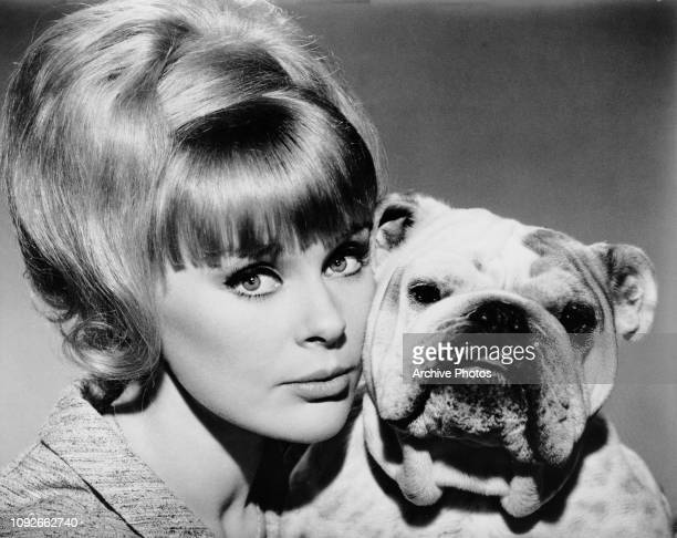 German actress Elke Sommer as Maria Gambrelli, with a dog in a publicity still for the Inspector Clouseau film 'A Shot in the Dark', 1964.
