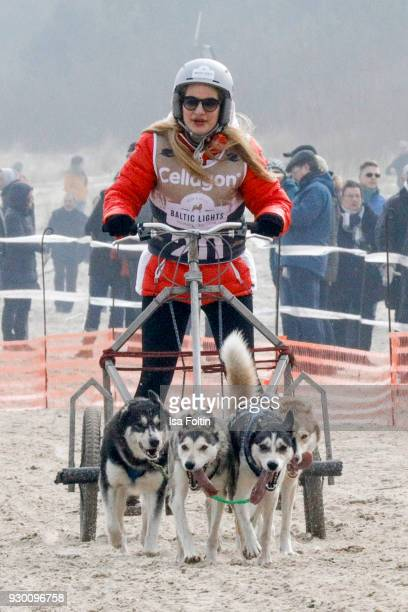 German actress Susan Sideropoulos runs with sled dogs during the 'Baltic Lights' charity event on March 10 2018 in Heringsdorf Germany The annual...