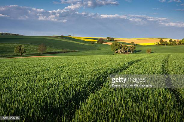 German agriculture in spring