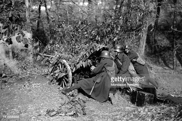 German antitank artillery opening fire in a camouflaged emplacement in the woods Poland September 1939