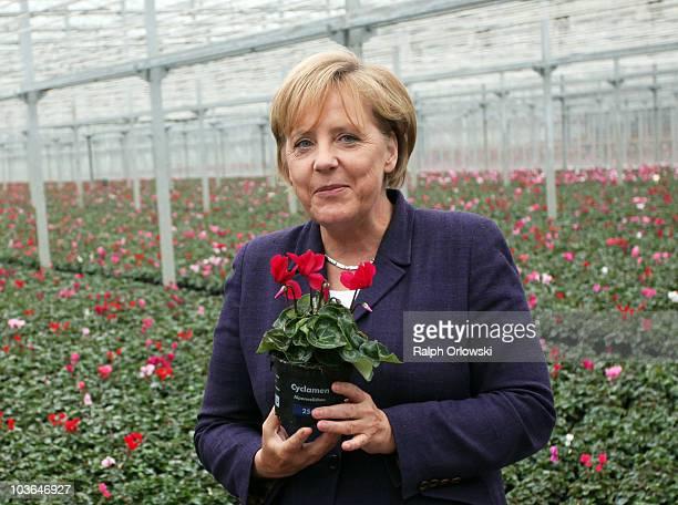 German Chancellor Angela Merkel holds flowers during the visit of a market garden during her familiarization trip on August 26 2010 in Emsbueren...