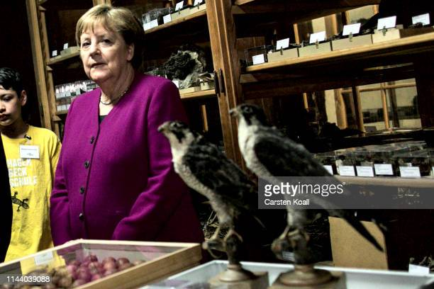 German Chancellor Angela Merkel views exhibits at the Berlin Natural History Museum while taking a tour with high school students on May 16 2019 in...
