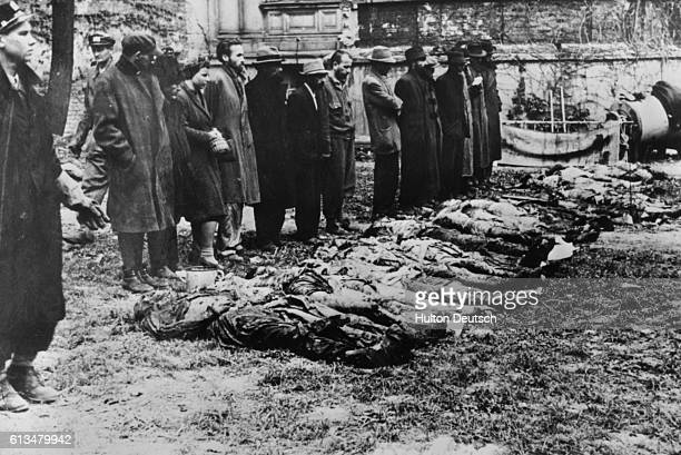 German civilians view the bodies of Jewish prisoners at the newly liberated Auschwitz concentration camp Allied troops brought many groups of...