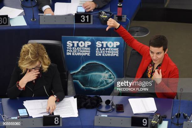 German copresident of the Greens parliamentary group Ska Keller takes part in a voting session on the Conservation of fishery resources and...