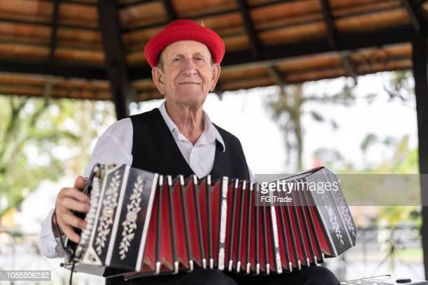 homem sênior de ascendência alemã tocando acordeão em blumenau, santa catarina, brasil - cultura alemã - fotografias e filmes do acervo