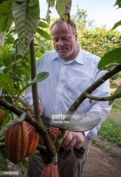 German Development Minister Dirk Niebel uses a machete to cut a cocoa fruit from a tree while he visits a cocoa plantation on October 30 2012 in...